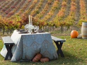 Fall Vineyard Dinner – Paso Robles Style