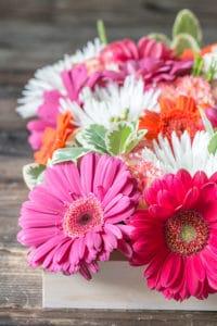 How to make a Floral Garden