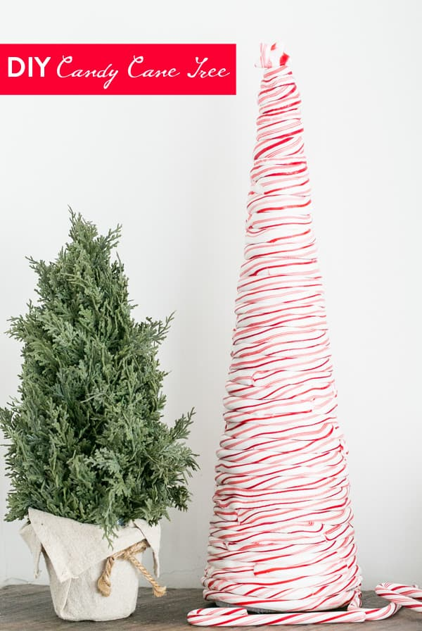 Tall tree made from candy canes on a mantle with a green tree next to it.