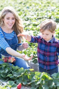 LA with Kids: Underwood Family Farms