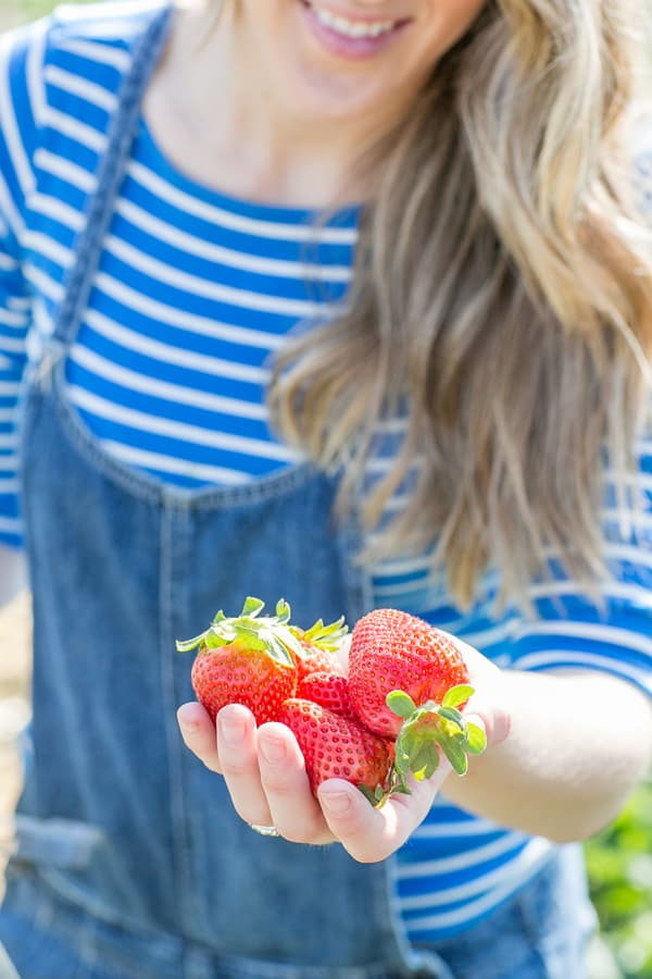 StrawberryPicking_4