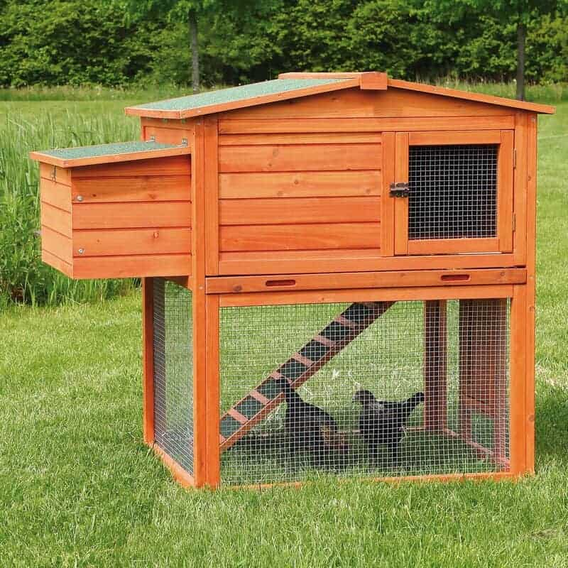 Small chicken coop.