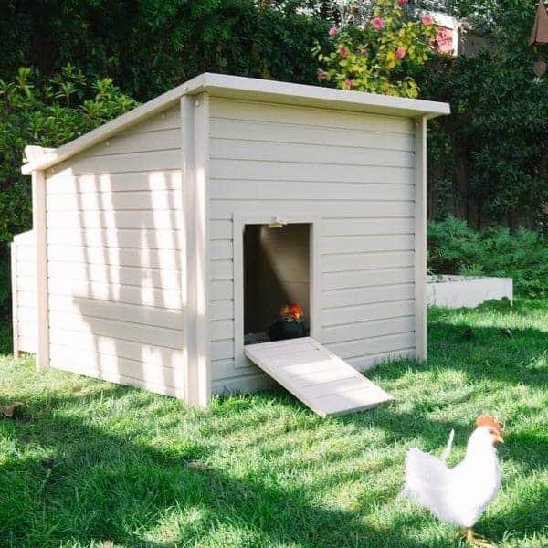 Little farmhouse chicken coop