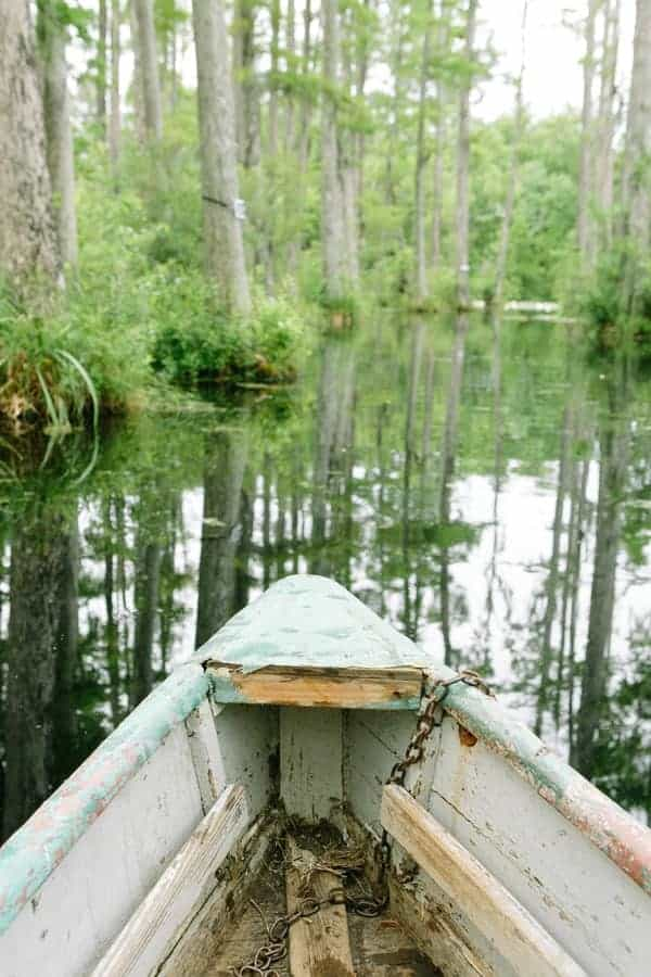 Boat in a swamp at Cypress gardens