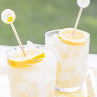 Printable Drink Stirrers for Alex's Lemonade Stand
