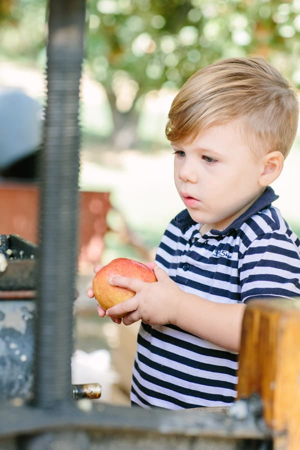 ApplePicking_10
