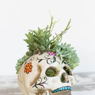 Easy Skull Planter – A Halloween Centerpiece