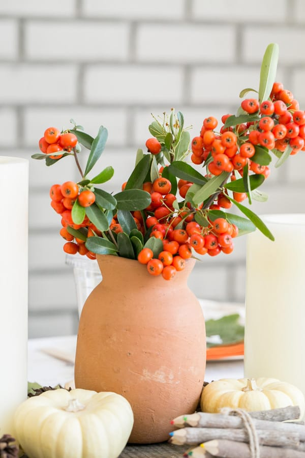 Clay vase with red berries.