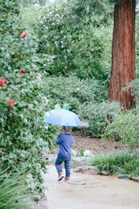 LA with Kids: Descanso Gardens