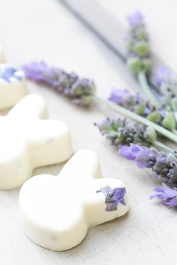 White chocolate bunnies with lavender.