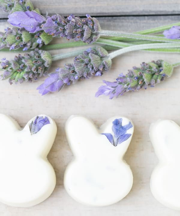 White chocolate bunnies with lavender