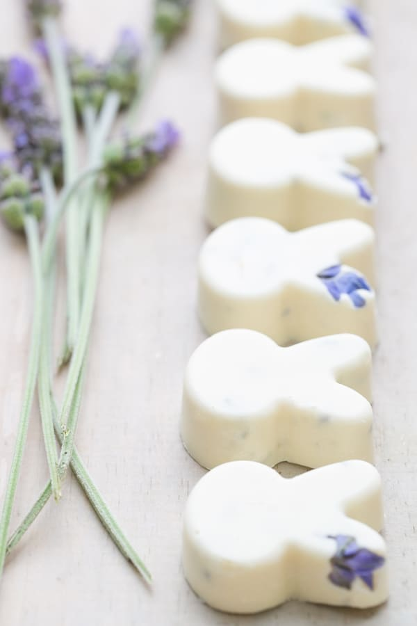 white chocolate bunnies with lavender in a row