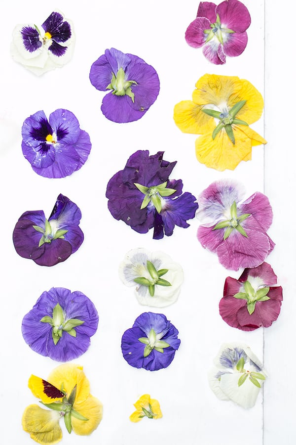 Edible flowers on a piece of paper.