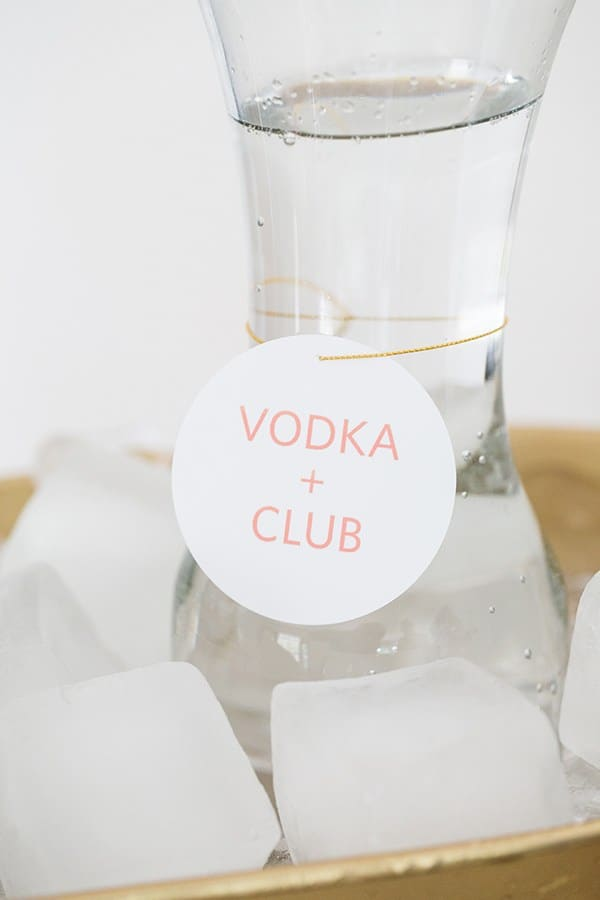 vodka and club