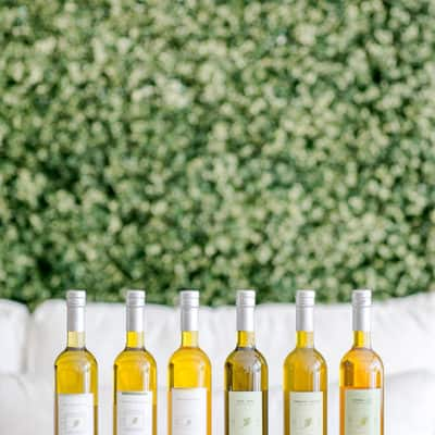 How to Host an Olive Oil Tasting