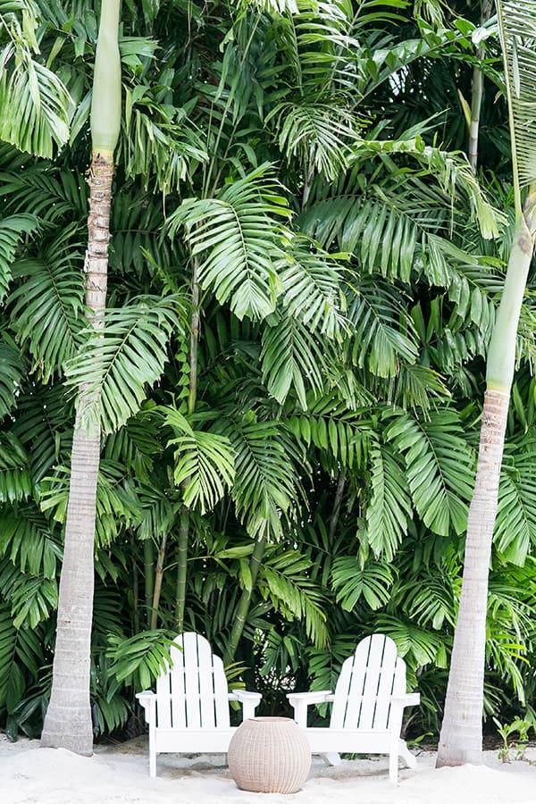 Hawaii_Oahu_37