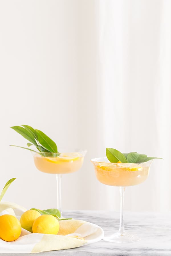 side shot of rose cocktails with lemons in a beautiful coup glass.