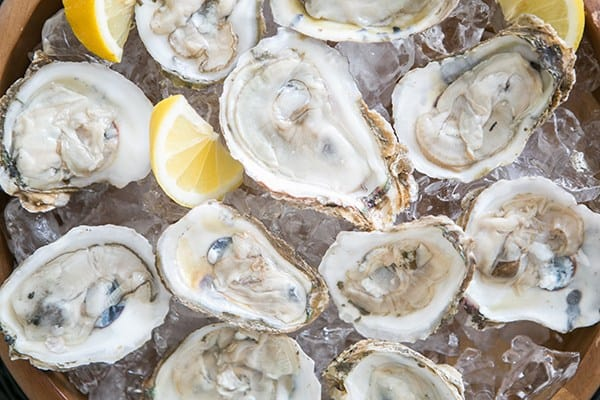 Oysters for an Oscar party