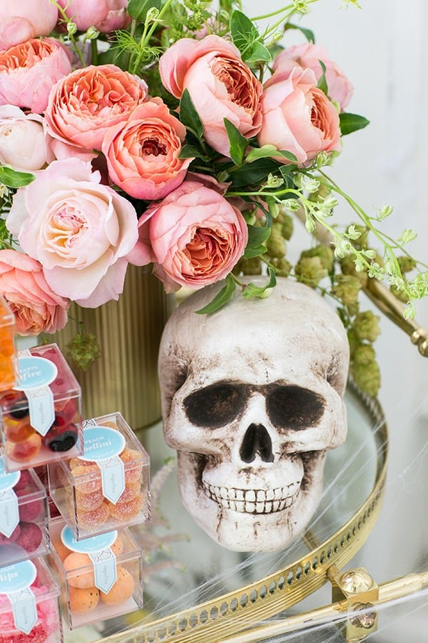 shot of skull and pink flowers