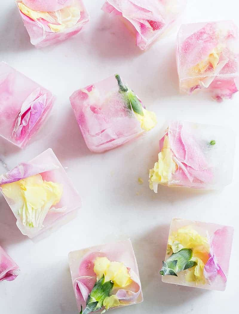 Floral pink ice cubes with flowers frozen inside.