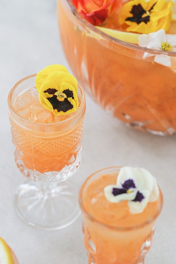 shot of glass with cocktail in it and flower garnish
