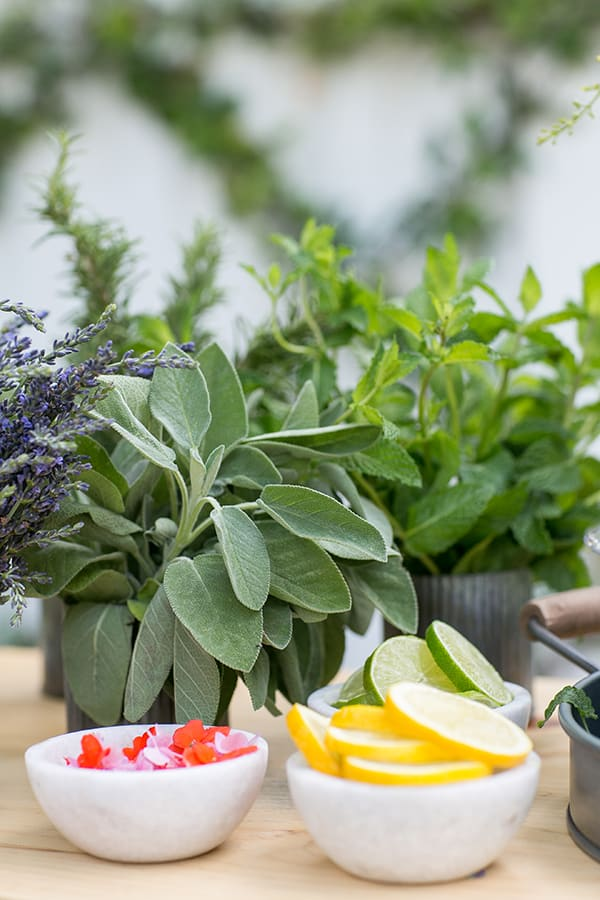 Sliced lemons, edible flowers,, fresh sage, fresh mint and fresh lavender on a garden cocktail bar.