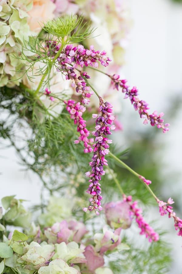 Pink flowers in garden arrangement