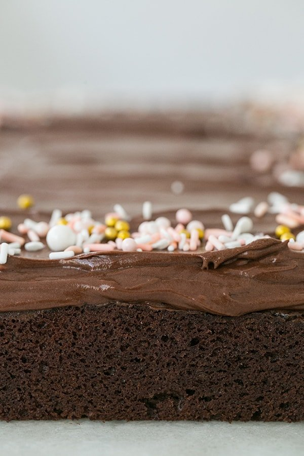 Chocolate Zucchini Cake with chocolate buttercream frosting and sprinkles.