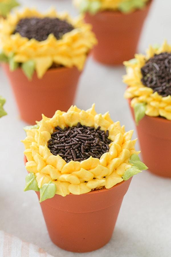 Pumpkin Spice Sunflower Cupcake