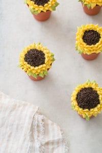 Pumpkin Spice Sunflower Cupcakes
