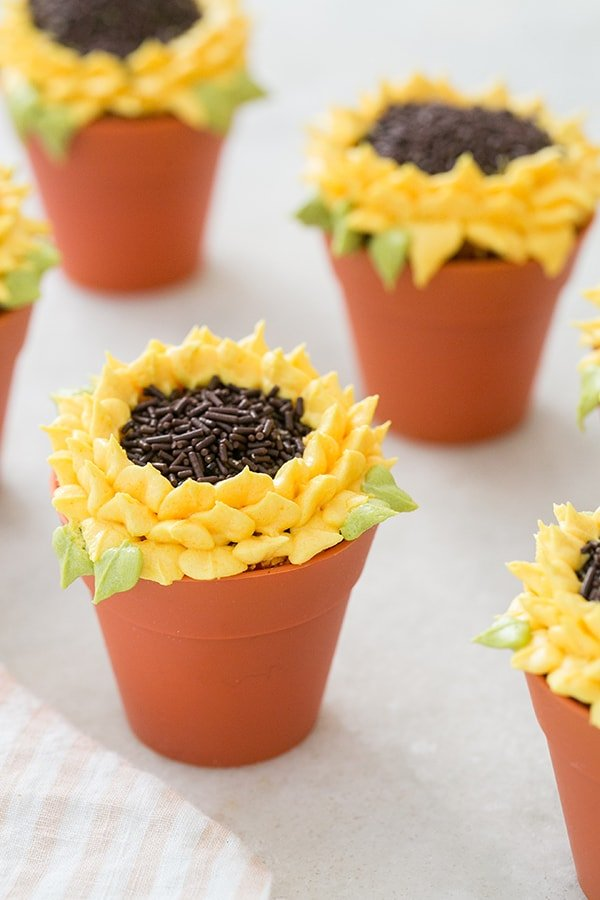 Pumpkin Spice Sunflower Cupcakes in baking pots