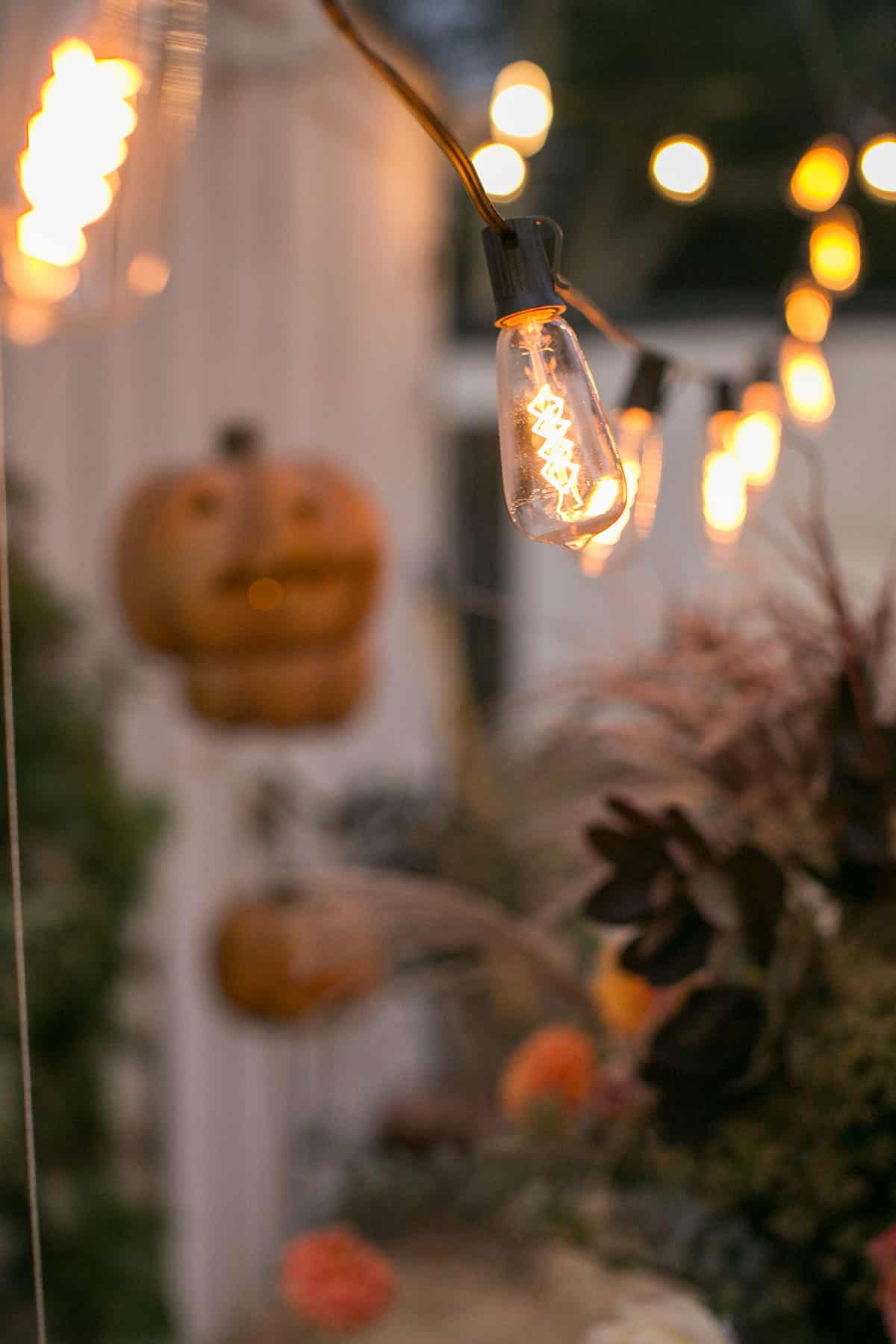 market lights dimmed at a Halloween party