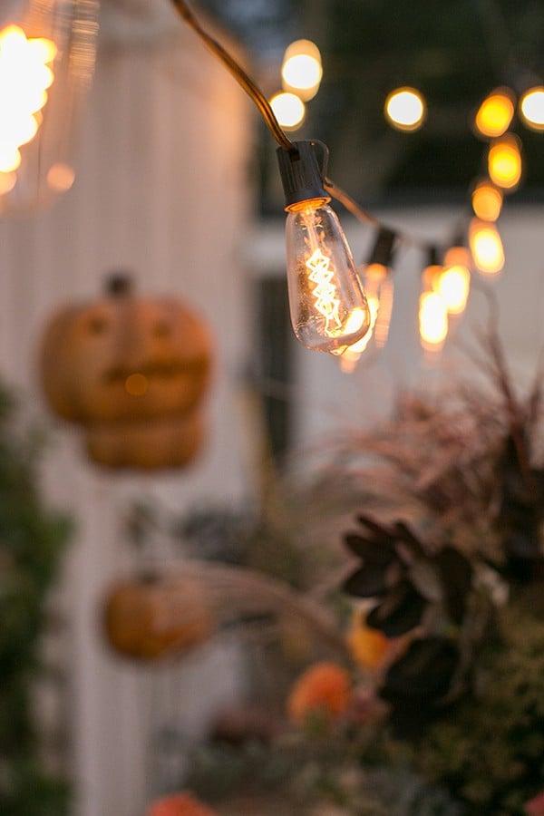 shot of outdoor lights hanging up