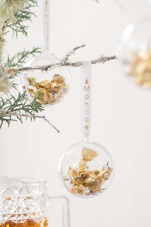 shot of bauble hanging fro a branch