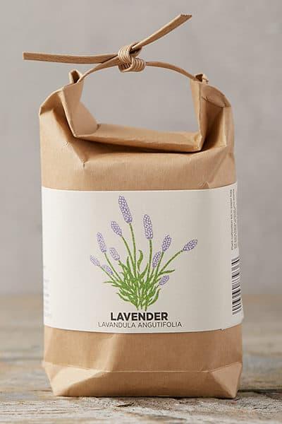 Lavender_DailyCharm