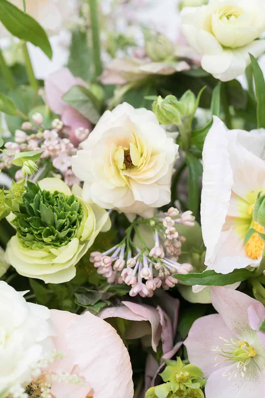 Close up photos of flowers.