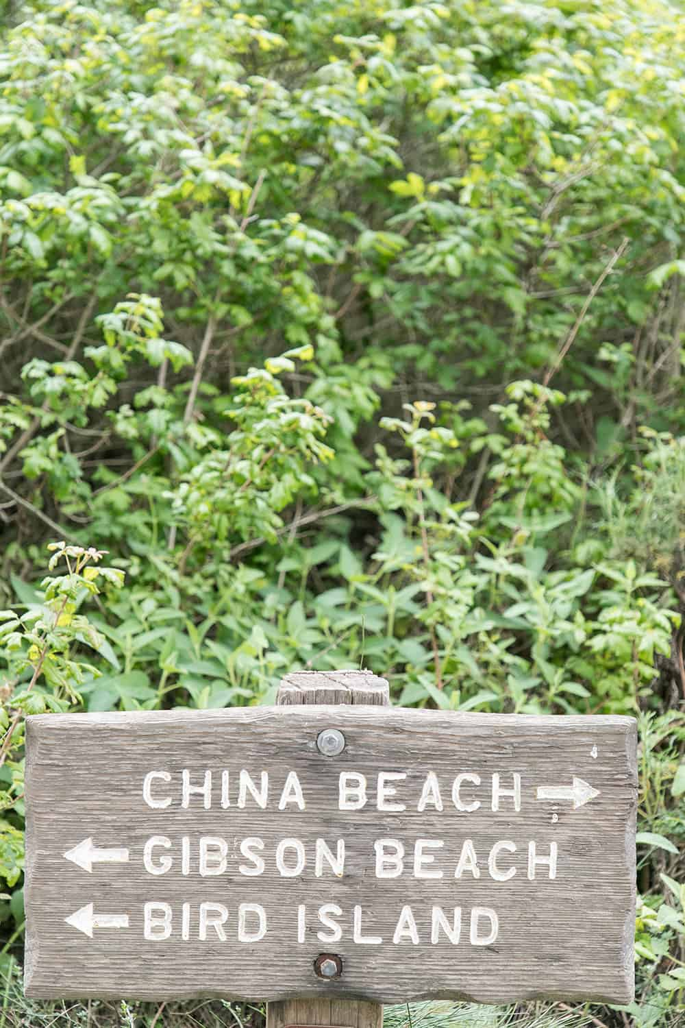 wooden beach sign that sign china beach, gibson beach and bird beach