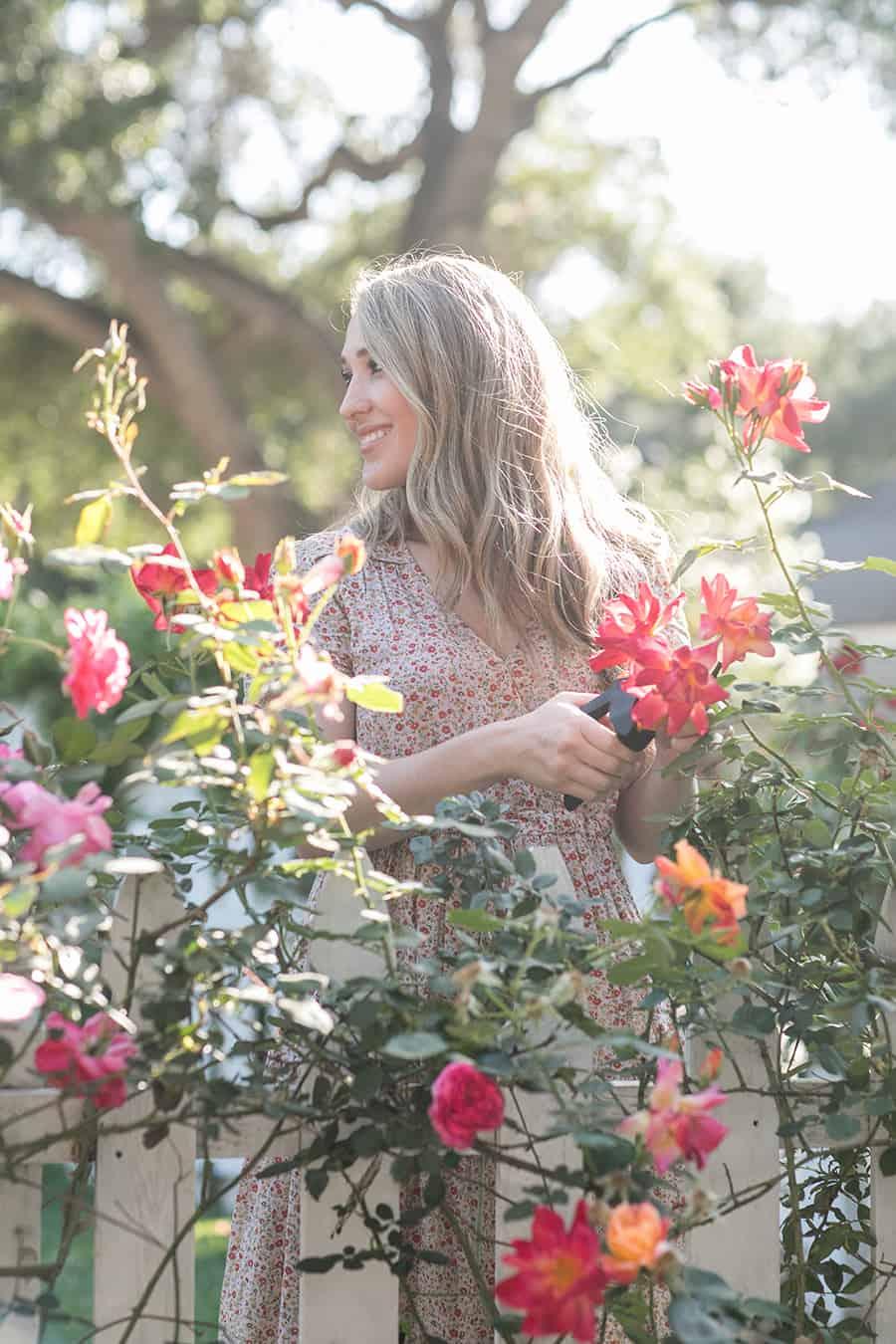 Eden Passante clipping roses in her garden