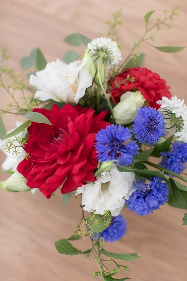 Beautiful red, white and blue flowers