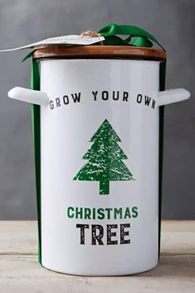 ChristmasTree_DailyCharm