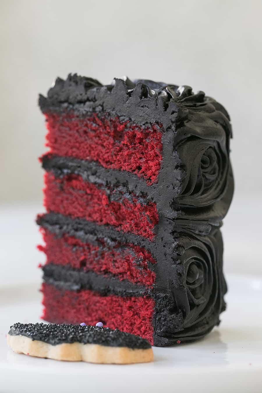 shot of slice of cake