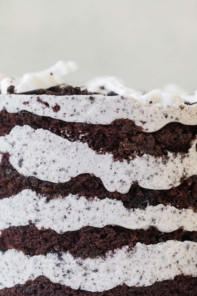 Close up photo of chocolate cake layers with vanilla frosting.