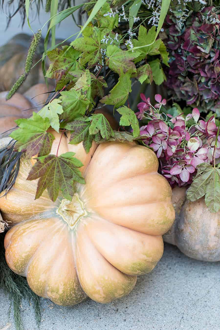 Fairytale pumpkin with flowers