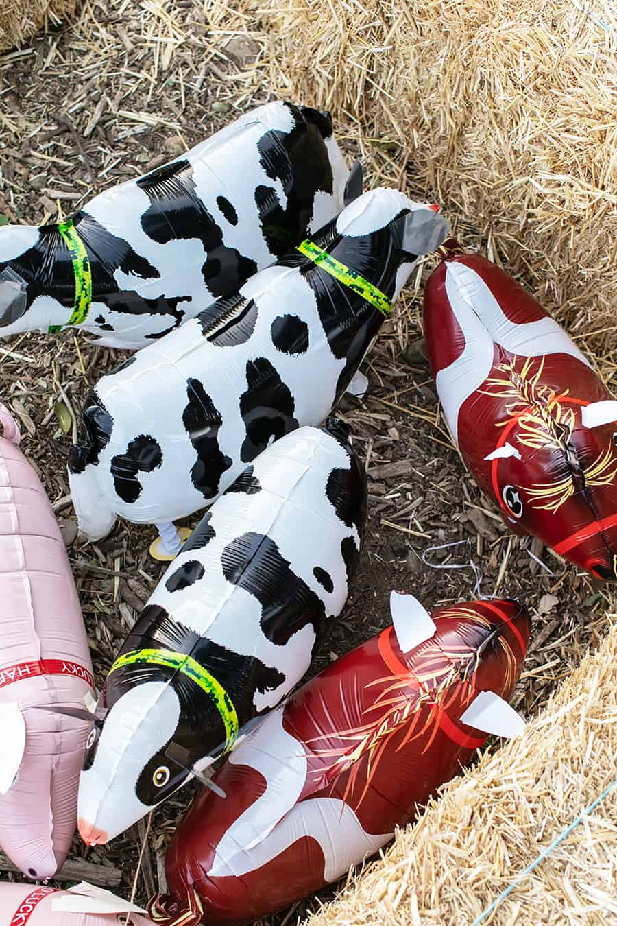 cow, horse and pig balloons