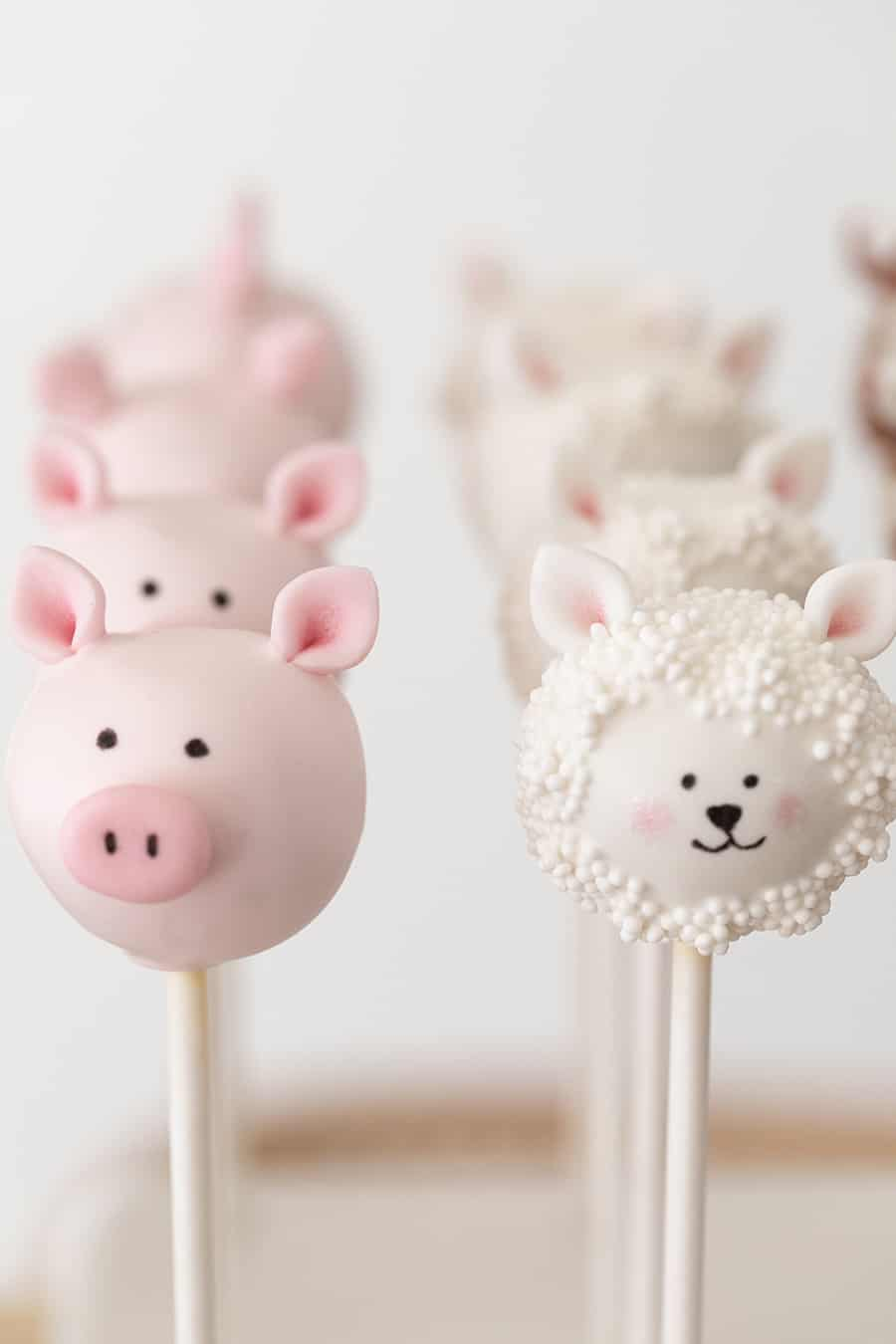 pig and lamb cake pops
