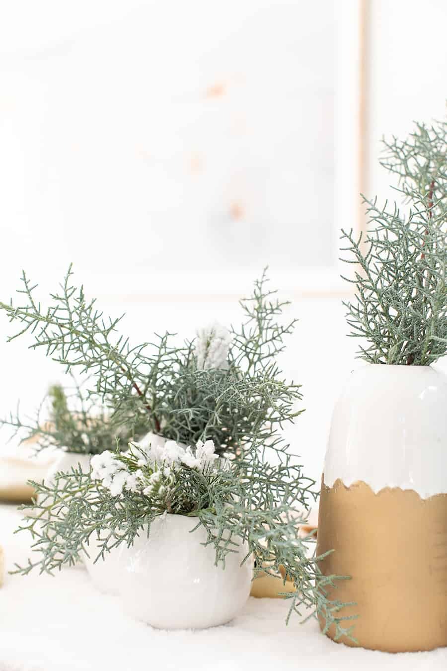 Christmas greens in a white and gold vase.
