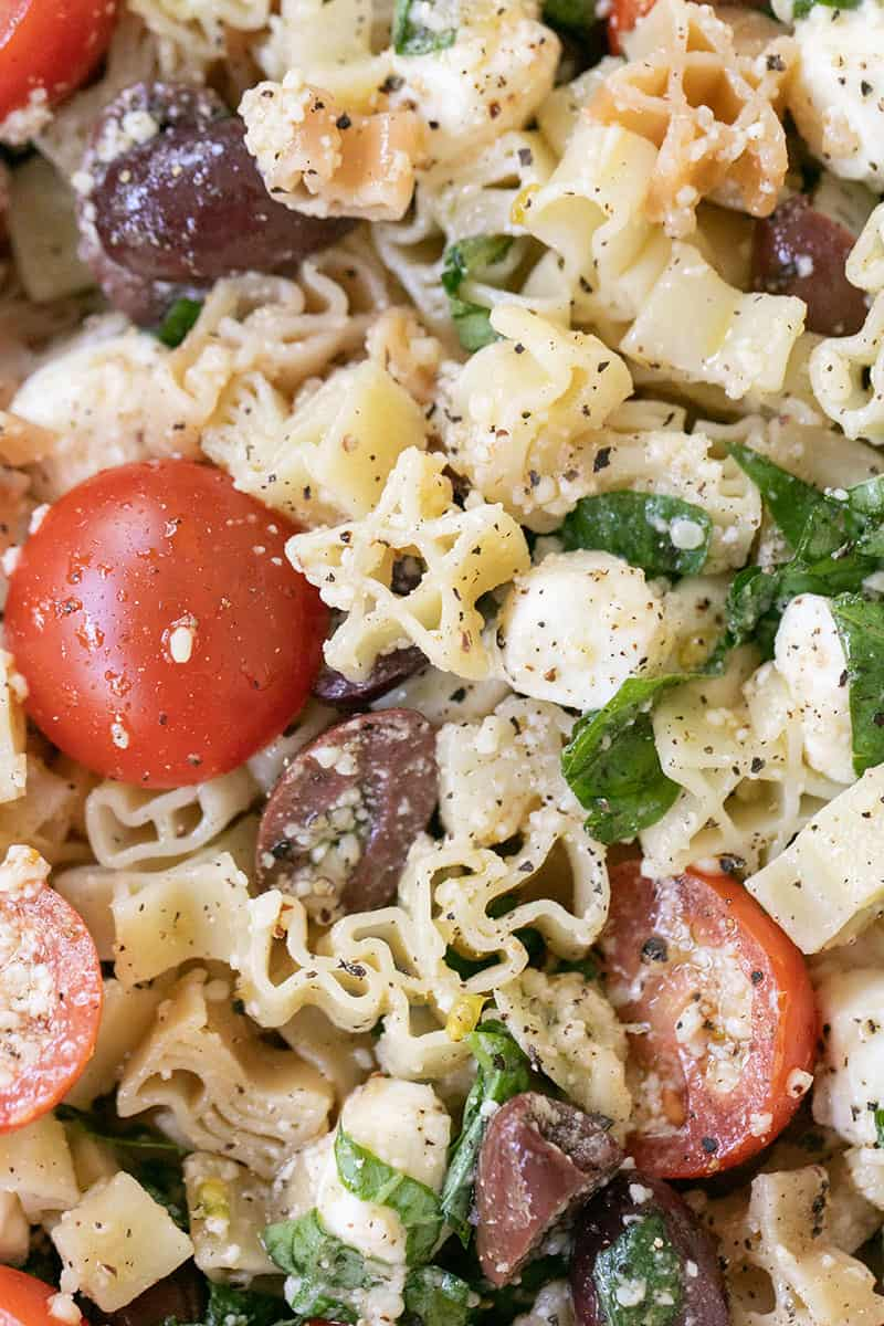 Summer Pasta Salad Recipe with tomatoes, olives, garlic, cheese and basil.