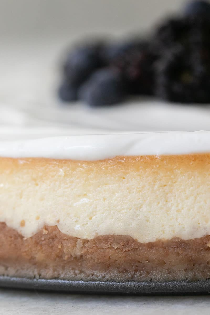 Close-up photo of ricotta cheesecake with layers of Nilla cookie crust and a sour cream topping.