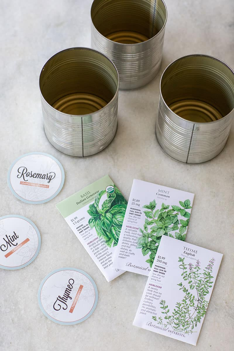 DIY Indoor Herb garden in tin cans with seeds and rosemary