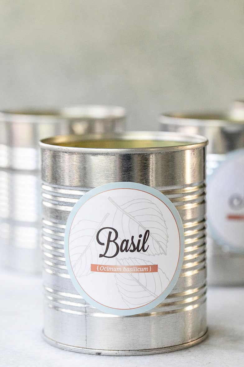 Free herb garden labels on a tin can for herb garden kits